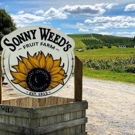 sonny weeds sign
